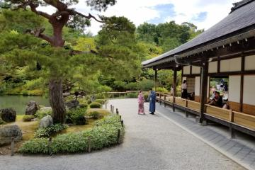 A scene from Kyoto in summer 2019